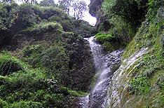 Chadwick Falls Shimla Holidays Packages Himachal Pradesh