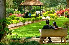 Cubbon Park Bangalore Honeymoon  Tour Packages Karnataka India