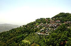 Honeymoon Packages in Dalhousie Himachal Pradesh India