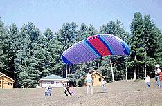 Jammu Tours Patnitop Travels Jammu and Kashmir