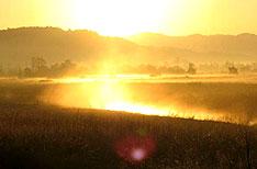 Corbett National Park Wildlife Tours India