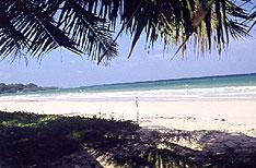 Long Island Andaman and Nicobar Islands Honeymoon Packages