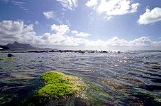 Mahebourg Mauritius Travel Holidays