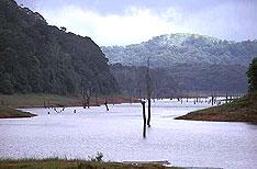 Honeymoon Tours Periyar National Park Thekkady Kerala