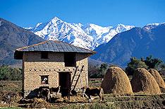 Ranikhet Uttaranchal Travel Packages India