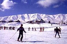 Skiing Patnitop Tours Jammu and Kashmir