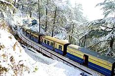 Toy Train Travel Shimla Himachal Pradesh